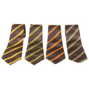 PHS Boys House Ties.